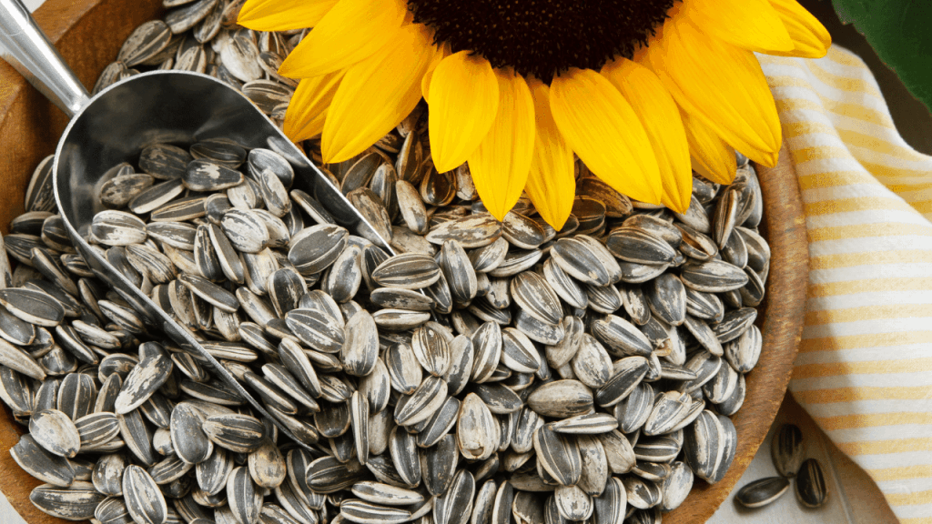 How Long Do Sunflower Seeds Last